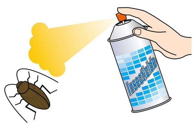 進化形ゴキブリ殺虫剤 死骸は見たいか見たくないか (NIKKEI STYLE) - Yahoo!ニュース