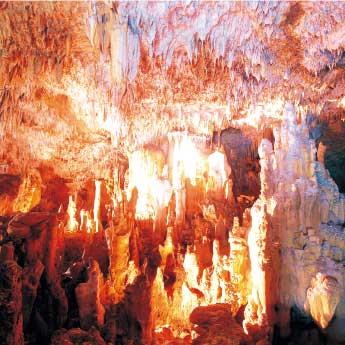 石垣島鍾乳洞 公式サイト – サンゴ礁から生まれた美しい鍾乳洞