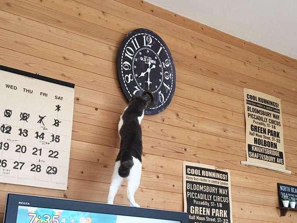 【画像】最近、居間の時計がおかしい! 原因が発覚ww