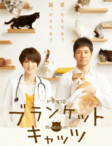 【実況・感想】NHKドラマ10「ブランケットキャッツ」