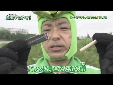 香川照之の昆虫すごいぜ!「トノサマバッタ」 - YouTube