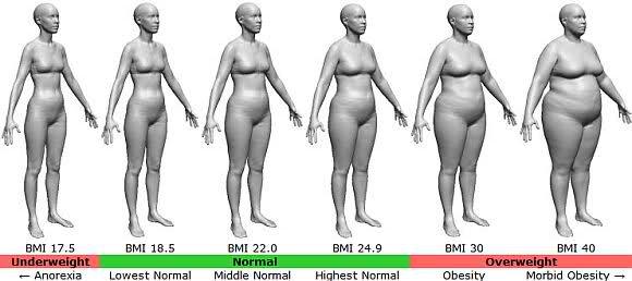 BMI標準(18.5~25)の人集合♡
