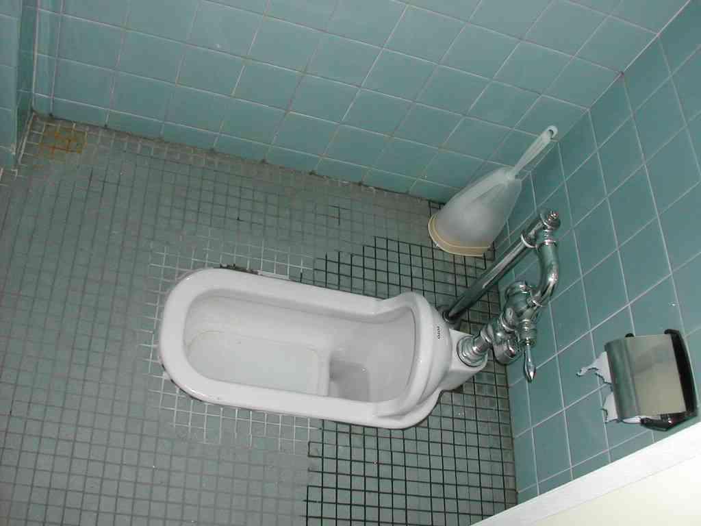 """学校トイレ論議-便座触れるのを嫌う""""和式派""""、「排便しにくい」が理由の""""洋式派"""""""