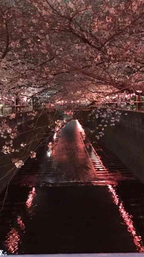 今日の出来事❗️|野口五郎オフィシャルブログ「GOROの楽が来帳」Powered by Ameba