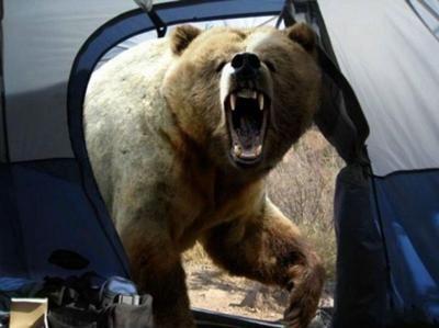 東北人が激怒 東北熊襲発言とは? サントリー不買運動にまで発展 - NAVER まとめ
