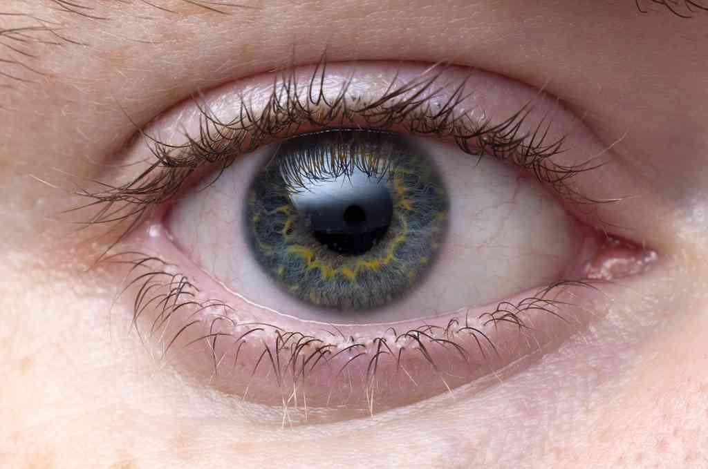 【症例写真】コンタクトレンズで失明?角膜新生血管の危険性・原因と対処法 | 自分でできるアンチエイジング講座