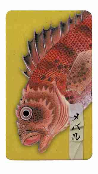 魚ダジャレを考えよう