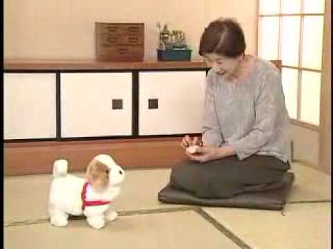 日本直販 愛犬ロボ「てつ」 - YouTube
