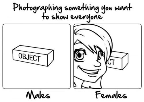 考え方が男性的とは