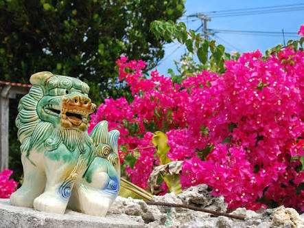 沖縄の貰って嬉しいお土産