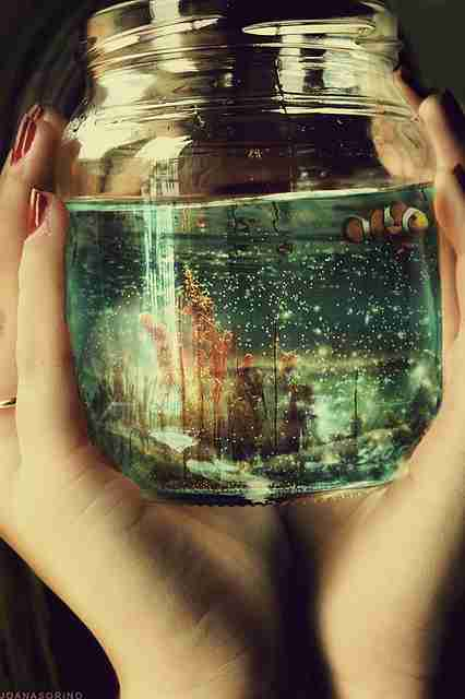 透明感あふれる画像が見たい