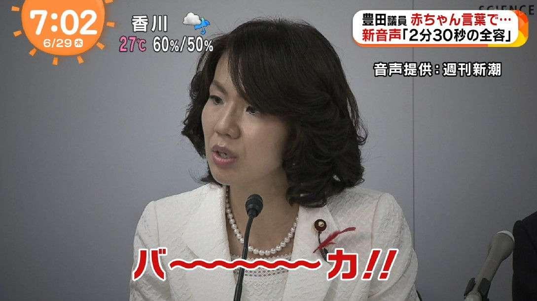 西川史子とテリー伊藤「暴言の豊田真由子議員」を擁護 ネットでは賛否両論