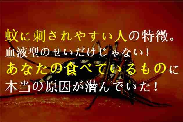 蚊に刺されやすい人の特徴。あなたの食べているものに原因が潜んでいた!
