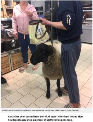 羊を連れてスーパーに来た飼い主、入店拒否を告げられ大揉め(北アイルランド)
