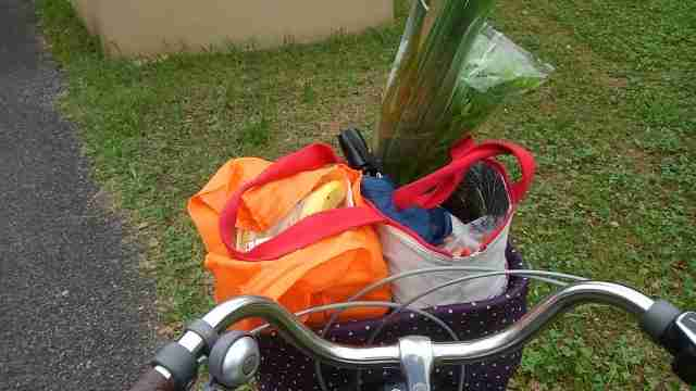 抱っこ紐で自転車は法律違反?おんぶなら?赤ちゃんはいつから乗せる?