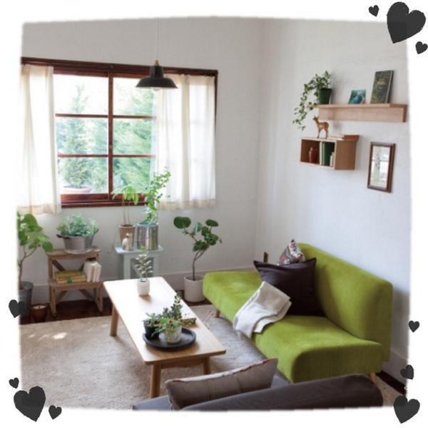 部屋にグリーンを置きたい。