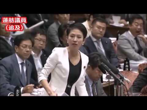 蓮舫VS蓮舫 - YouTube