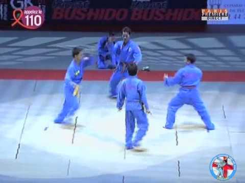 WVVF - VOVINAM VIET VO DAO DEMONSTRATION - BERCY PARIS 2008 - YouTube