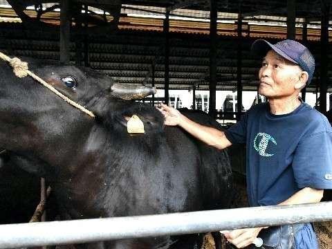 「現場はぎりぎり」家畜往診の獣医師 ペット診療は飽和 偏在がひずみ生む (西日本新聞) - Yahoo!ニュース