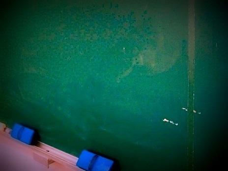女性教諭が小1児童に暴言「脳みそ使えよ」 石垣市内の小学校 | 沖縄タイムス+プラス ニュース | 沖縄タイムス+プラス