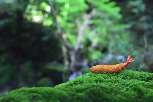 渓谷で撮影されたエビフライの写真が美しすぎると話題に 「ステキなポートレート」「これが野生のエビフライか」