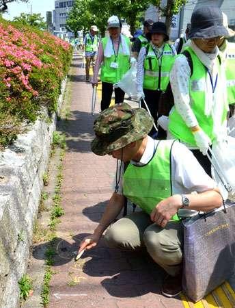 犬のふん害防止に効果絶大、イエローチョーク作戦 京都、全国で反響