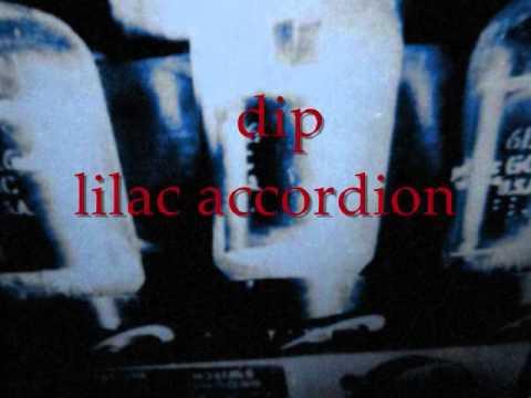 dip   lilac accordion - YouTube