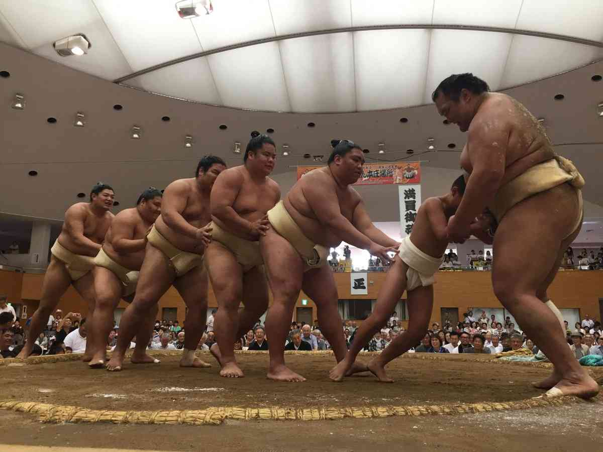 お相撲さん浴衣コレクション2017夏