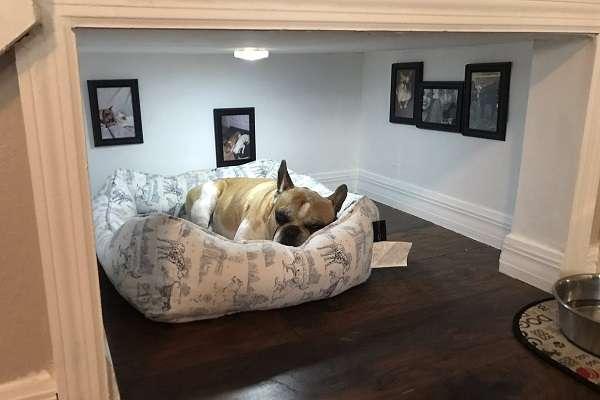 飼い主が手作りしたワンコ専用部屋が愛にあふれている!