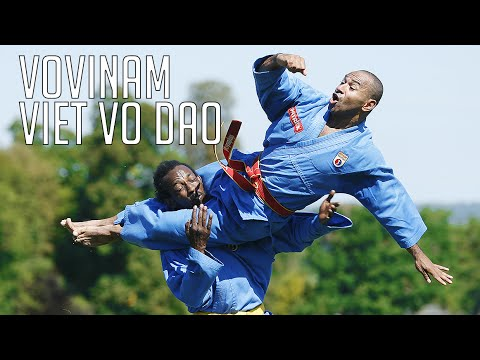 Vovinam Viet Vo Dao... Kesako ? par Patrick Gbwel - Goodies#119 - YouTube