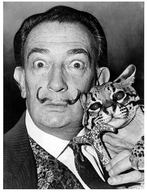 アーティストは猫がお好き! ダリやピカソなど…愛するニャンコたちとのポートレートで見せる素顔が素敵! | Pouch[ポーチ]