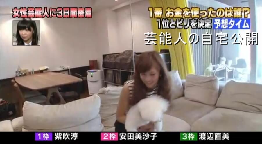 【芸能人の自宅】安田美沙子さんの自宅【画像あり】