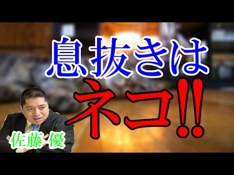 佐藤優 仕事の息抜きはネコと遊ぶこと!タマちゃんがお気に入り!笑 - YouTube