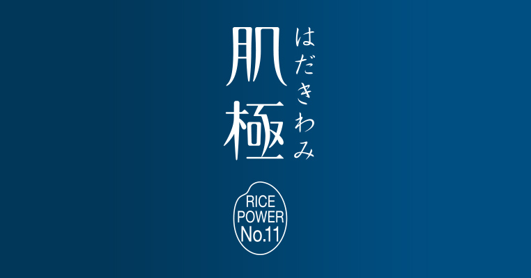 ライスパワー®No.11とは | 悩める乾燥系女子に。 「肌極 はだきわみ」 | KOSE