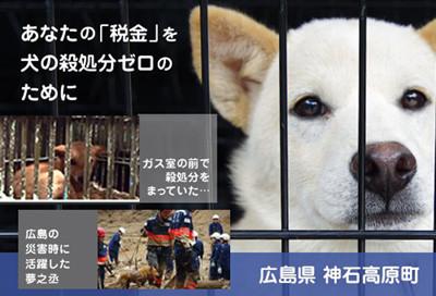 ふるさと納税で、犬の殺処分をゼロに!広島県神石高原町