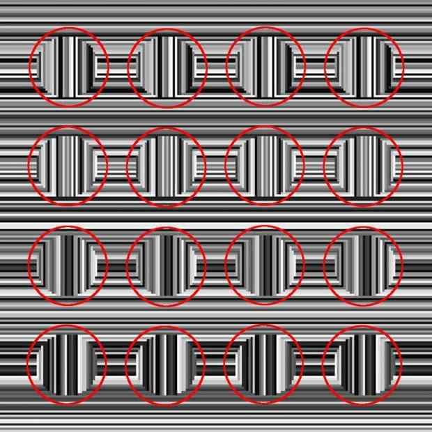あなたには見える?「この画像の中に、16個の円が隠れている」