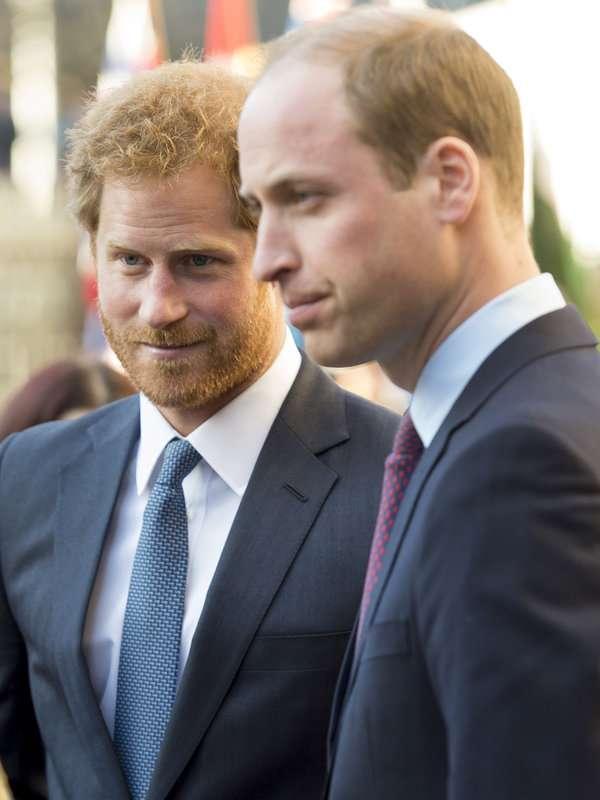 【ELLE】ウィリアム王子とヘンリー王子、「ダイアナ元妃は最高の母親だった」|エル・オンライン