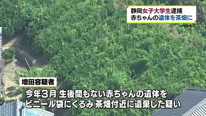 静岡・女子大学生を逮捕、赤ちゃんの遺体を遺棄した疑い TBS NEWS