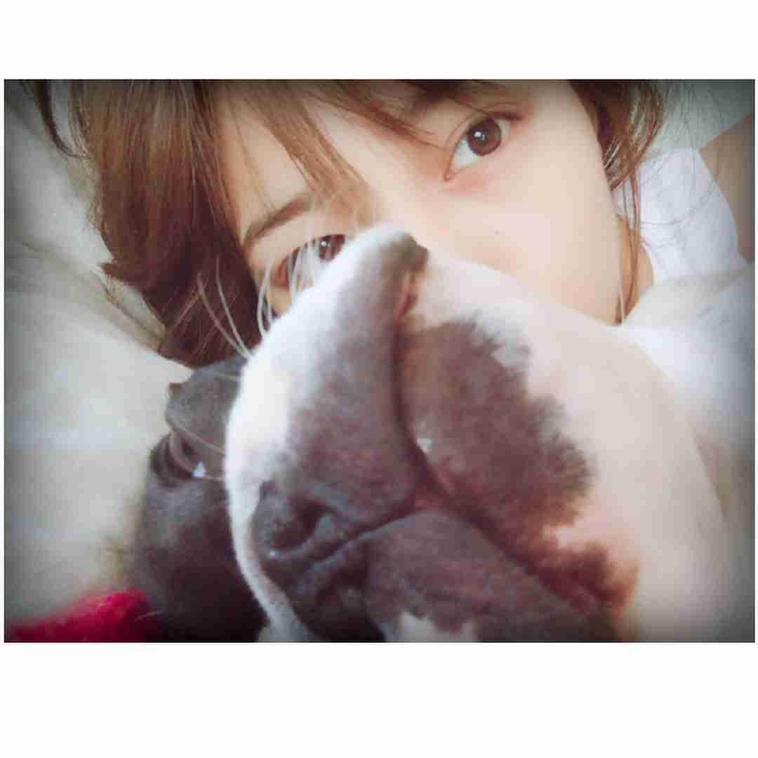 川口春奈、添い寝ショットにファン悶絶「天使」「癒された!」