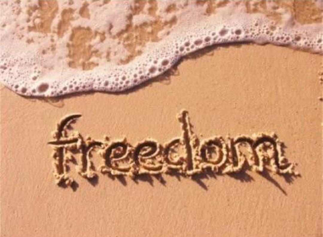 自由をこよなく愛する人