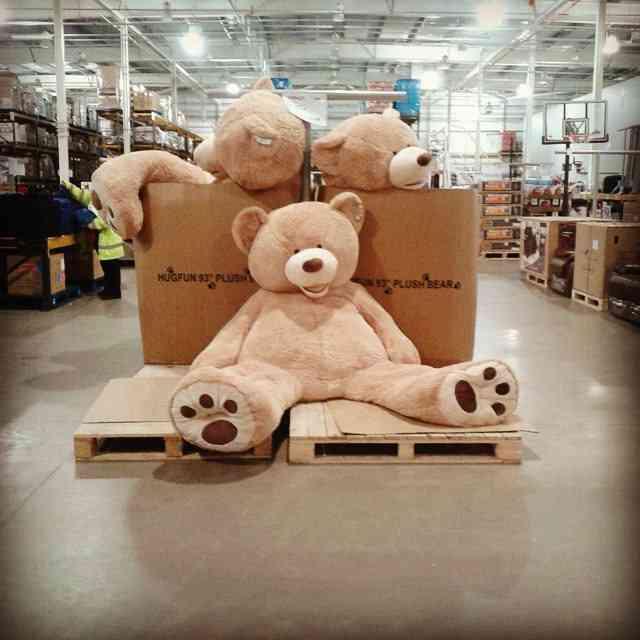 「インスタ映え」の暴走 IKEAでカートに乗るJKが増殖中