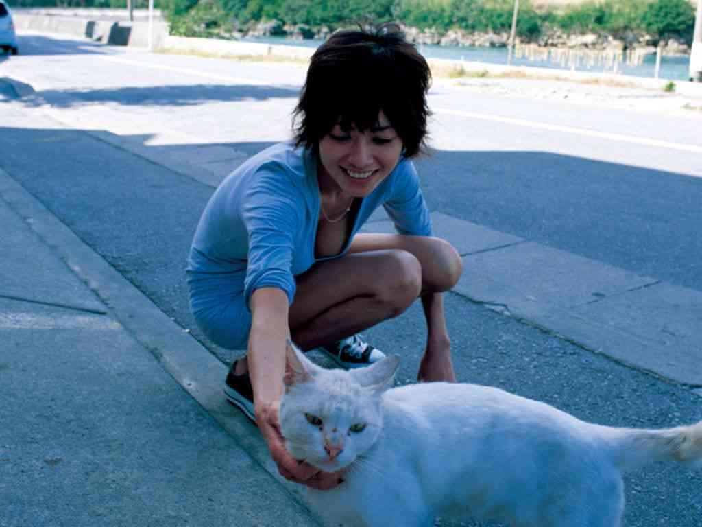 真木よう子主演「セシルのもくろみ」第4話は4・4% 0・4ポイント減で最低視聴率更新…