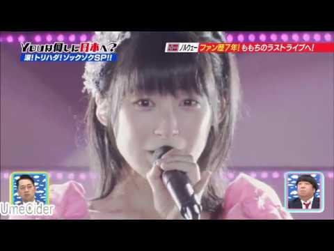 You は ももち卒紺のため日本へ - YouTube