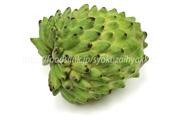トロピカルフルーツ/南国の果物一覧:旬の果物百科