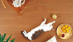マイホーム 床暖房って必要ですか?