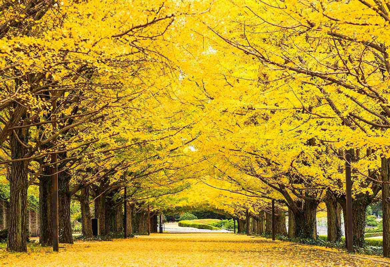 23区「外」の東京を語りましょう♪ part2