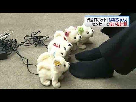 犬型ロボットがくんくん~なんと匂いを計測 - YouTube
