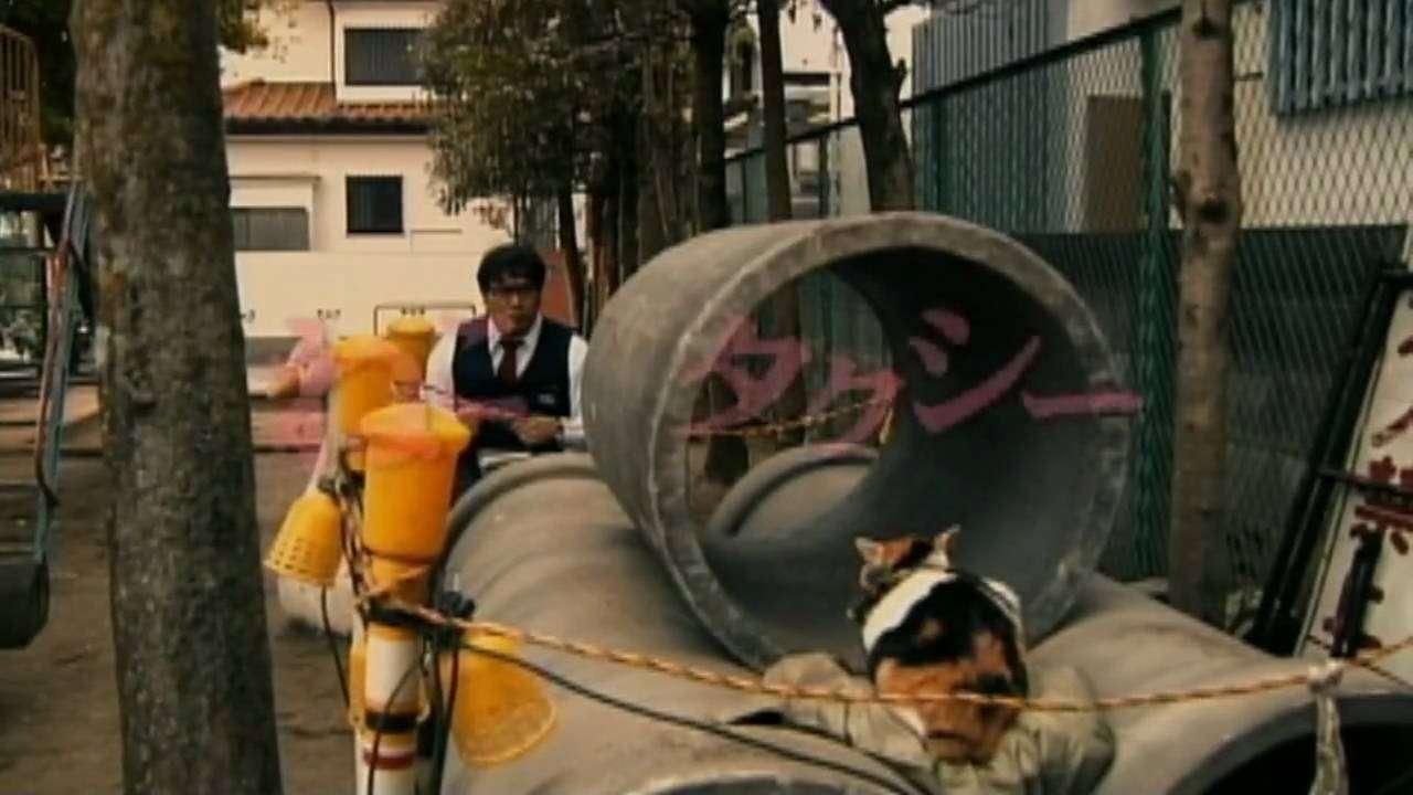 映画版『ねこタクシー』予告編 - YouTube