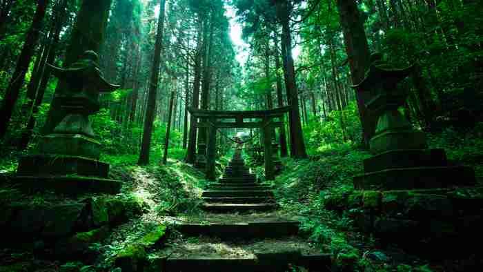 ズムサタでフォトジェニックな「インスタ映え神社」が紹介され物議「罰当たりすぎ」「神様のいる場所を冒涜」の声