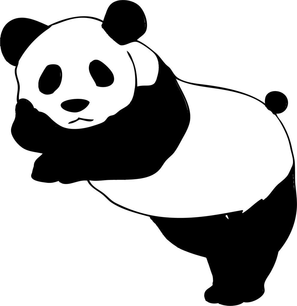 """""""パンダのようなカメ""""が話題に"""